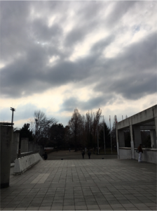 神奈マスプール外